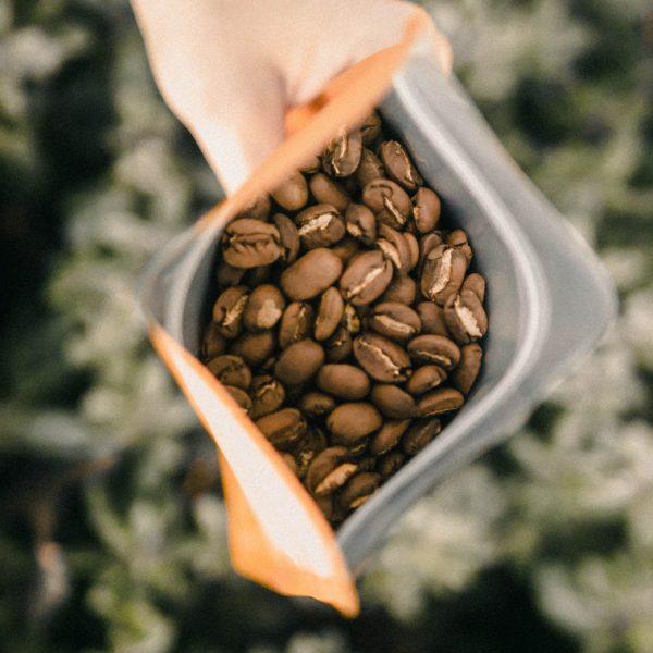 speciality coffee, premium coffee, artisan coffee, single origin